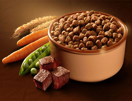 Global Pet Food Industry Statistics